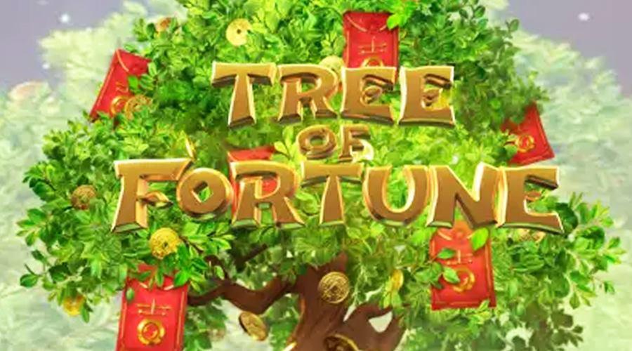 รีวิวเกม Tree of Fortune ต้นไม้แห่งโชคลาภ สล็อตอะไรกันเนี่ย  แตกโคตรง่ายได้โคตรเยอะ - Mnk Izola